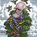 Charles Darwin In His Evolutionary Tree Poster by Bill Sanderson