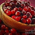 Cranberries in a bowl Poster by Elena Elisseeva