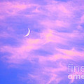 Crescent Moon Behind Cirrus Cloud in the Evening Print by Gordon Wood