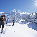 Cross-country Skiers In The Selkirk Print by Jimmy Chin