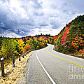 Fall highway Print by Elena Elisseeva