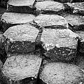 giants causeway stones northern ireland Print by Joe Fox
