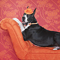 Great Dane (canis Lupus Familiaris) On Couch Print by Catherine Ledner