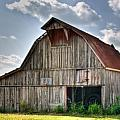 Grey Barn Print by Douglas Barnett