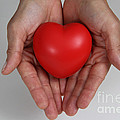 Heart Disease Prevention Poster by Photo Researchers, Inc.