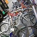 Many Bikes Print by Marilyn Hunt