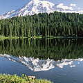 Mt Rainier Reflected In Lake Mt Rainier Poster by Tim Fitzharris