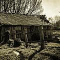 Old Fashioned Shed Print by Dawn OConnor