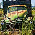 Old green truck Poster by Garry Gay