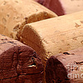 Red Wine Corks Print by Frank Tschakert