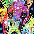Whippet Print by Dean Russo