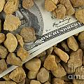 Money Print by Blink Images