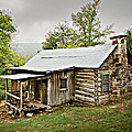 1209-1144 Historic Villines Homestead Print by Randy Forrester