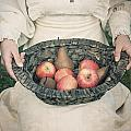 basket with fruits Poster by Joana Kruse