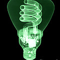 Energy Efficient Light Bulb Poster by Ted Kinsman