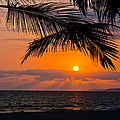 Nuevo Vallarta Sunset Poster by About Light  Images