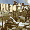 Slaves In Union Camp Print by Photo Researchers