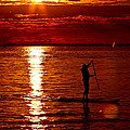 Sunset Silhouette Print by Barbara  White