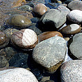 Sauble Pebbles Poster by Merv Scoble