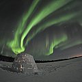 Aurora Borealis Over An Igloo On Walsh Poster by Jiri Hermann
