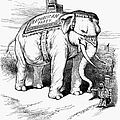 PRESIDENTIAL CAMPAIGN, 1884 Print by Granger