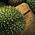 A Durian Fruit - Popular In South East Poster by Justin Guariglia