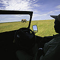 A Guide In A Jeep Observing An African Poster by Michael Melford