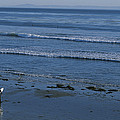 A Longboard Surfer Watches The Surf Print by Rich Reid