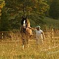 A Man and His Horse Poster by Terry Kirkland Cook