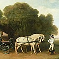 A Phaeton with a Pair of Cream Ponies in the Charge of a Stable-Lad Print by George Stubbs