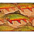 A Trout Lovers Dream Print by Terry Mulligan