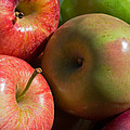 A Variety Of Apples Poster by Heidi Smith