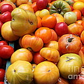 A Variety of Fresh Tomatoes - 5D17811 Poster by Wingsdomain Art and Photography