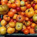 A Variety of Fresh Tomatoes - 5D17812 Poster by Wingsdomain Art and Photography
