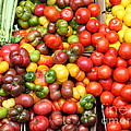 A Variety of Fresh Tomatoes and Celeries - 5D17901 Poster by Wingsdomain Art and Photography