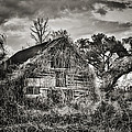 Abandoned Barn 2 Poster by Brenda Bryant