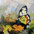 Abstract Butterfly on Lantana Print by Ginette Fine Art LLC Ginette Callaway