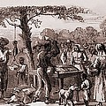 African American Freedmen Receiving Print by Everett