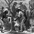 African American Slaves Using A Cotton Poster by Everett
