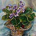 AFRICAN VIOLETS Poster by CAROLE SPANDAU