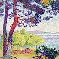 Afternoon at Pardigon Poster by Henri-Edmond Cross