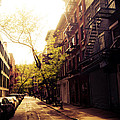 Afternoon Sunlight on a New York City Street Print by Vivienne Gucwa