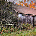 Aged Just Right - Jaffrey New Hampshire Barn  Print by Thomas Schoeller