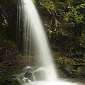 Alongside Grotto Falls Print by Andrew Soundarajan