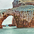Anacapa Island 's Arch Rock Poster by Cheryl Young