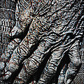 Ancient Hands Poster by Skip Nall