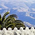Andalusian view by Heiko Koehrer-Wagner
