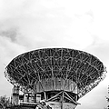 Antenna   Print by Olivier Le Queinec
