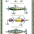 Antique Lure Panel Print by JQ Licensing