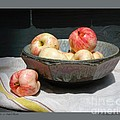 Apples in an Aerni Bowl Print by Patricia Overmoyer